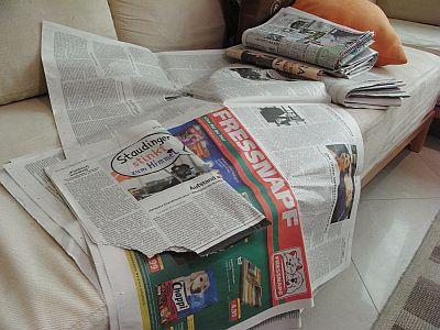 080917newspaper1